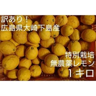 【クール便】無農薬!広島県大崎下島産 特別栽培レモン 1キロ(フルーツ)