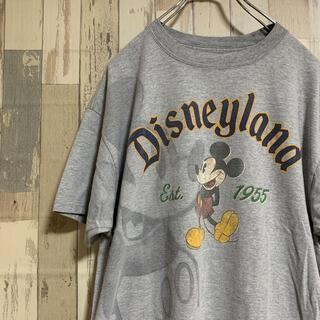 Disney - 美品★ディズニー×ヘインズ ヴィンテージミッキーtシャツ