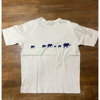 quadro/Tシャツ/mサイズ