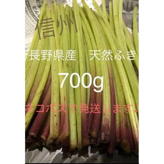 【最終セール!】長野県産 天然ふき 700g(野菜)