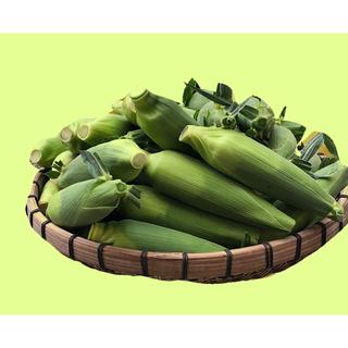 トウモロコシ ゴールドラッシュたくさん欲しいかた2L (野菜)