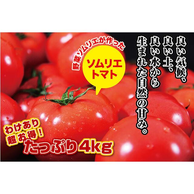 専用 食品/飲料/酒の食品(野菜)の商品写真