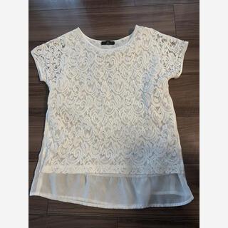イネド(INED)のイネドINEDレーストップスブラウスシャツ美品(シャツ/ブラウス(半袖/袖なし))