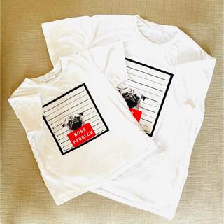ZARA - ZARA  ザラ Tシャツ 2枚セット