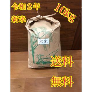 令和2年度産 新米 玄米ヒノヒカリ10kg
