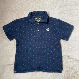 コンベックス(CONVEX)のCONVEX コンベックス ポロシャツ 110 ドット 水玉(Tシャツ/カットソー)