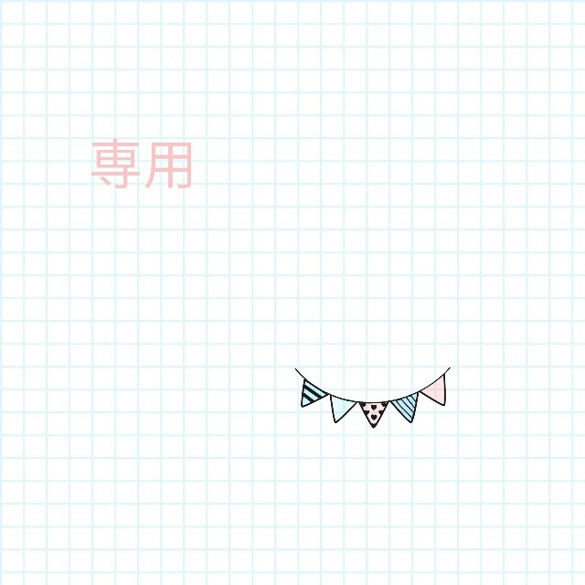専用 スマホ/家電/カメラの生活家電(その他)の商品写真