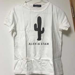 アリシアスタン(ALEXIA STAM)の新品未使用 アリシアスタン サボテンTシャツ(水着)