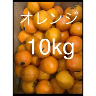 傷あり訳ありアメリカ産オレンジ約10kg( purespect)(フルーツ)