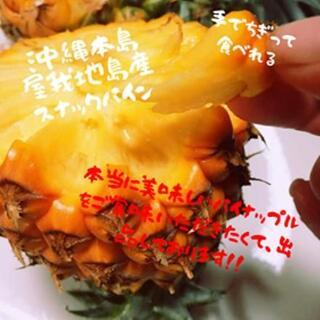 絶対に美味しい「屋我地島産」スナックパイン3玉!!(フルーツ)
