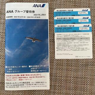 エーエヌエー(ゼンニッポンクウユ)(ANA(全日本空輸))のANA株式優待券とグループ優待券パンフレット(その他)