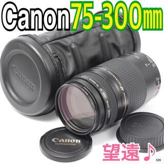 Canon - ✨大迫力の望遠レンズ✨ キヤノンCanon EF 75-300mm F4-5.6