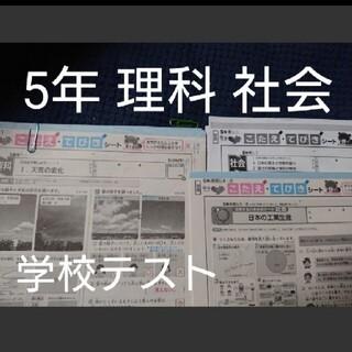 【タイムセール】5年 2020年 学校 テスト カラーテスト 理科 社会