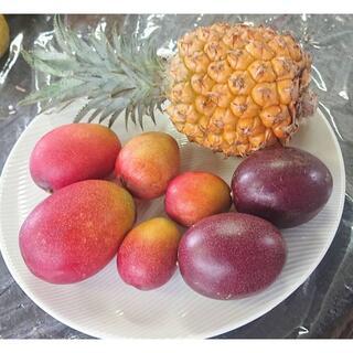 限定出品!沖縄本島産「マンゴー・スナックパイン他」初物絶品果実セット ♪(フルーツ)