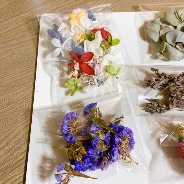 プリザーブドフラワー ドライフラワー 花材 紫陽花 あじさい かすみ草 ピンク ハンドメイドのフラワー/ガーデン(ドライフラワー)の商品写真