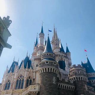 Disney - 6月24日DisneyLandディズニーランドチケット 使用済み グッズ購入用