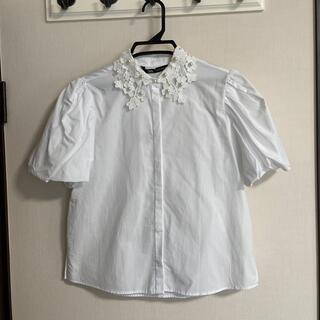 ザラ(ZARA)の新品 ZARA ザラ ブラウス レース襟 パール パフスリーブ M(シャツ/ブラウス(半袖/袖なし))