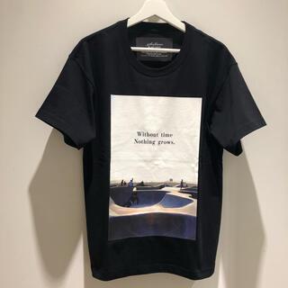 タトラス(TATRAS)のSeagreen 01サイズ  MSEA21S8202-M 新品未使用です!(Tシャツ/カットソー(半袖/袖なし))