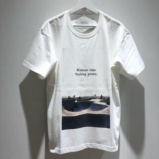 タトラス(TATRAS)のSeagreen MSEA21S8202-M WHITE Tシャツ 新品未使用!(Tシャツ/カットソー(半袖/袖なし))
