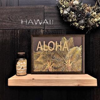 【送料無料】ハワイの風景☆Palm tree  No.521     フレーム付(アート/写真)