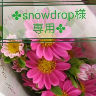 【snowdropさま専用】ブラウス、ハワイアンエアラインアメニティ(旅行用品)