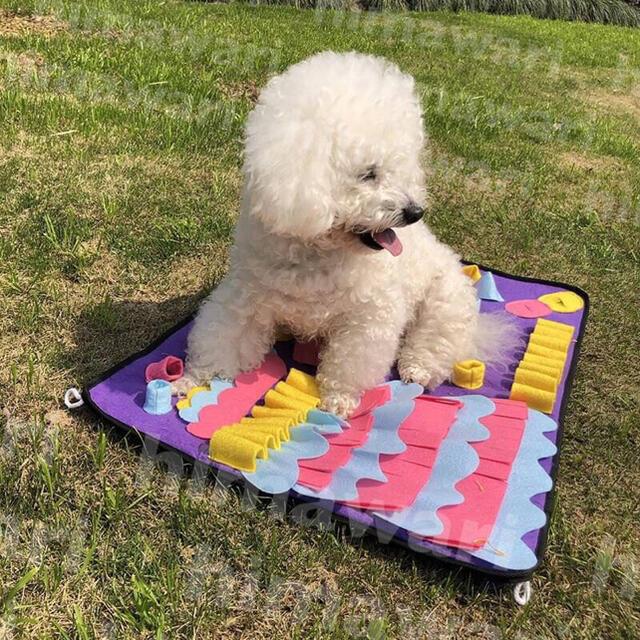 犬 猫 ノーズワークマット 訓練マット 餌マット しつけ おやつ探し その他のペット用品(犬)の商品写真