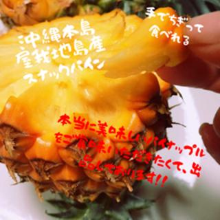 絶対美味しい!!沖縄本島【屋我地島産】人気のスナックパイン お試し2玉!(フルーツ)
