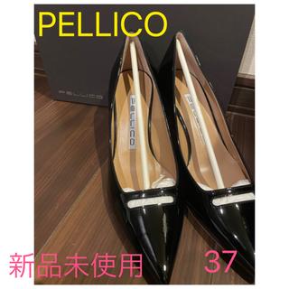 PELLICO - PELLICO ペリーコ エナメルパンプス アネッリ 新品未使用品