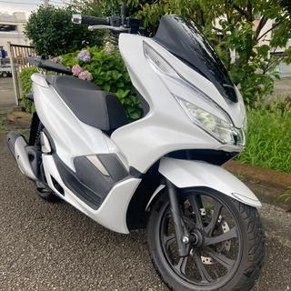 ホンダ(ホンダ)の神奈川 PCX JF81 pcx125 ホンダ HONDA(車体)