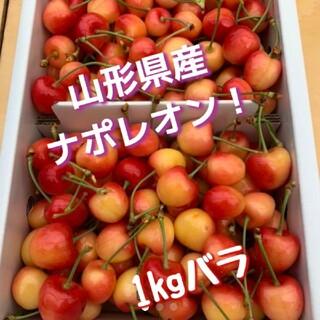 山形県産さくらんぼ ナポレオン  1kg