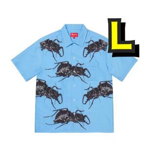 シュプリーム supreme beetle
