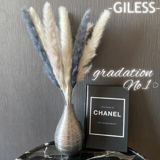 パンパスグラス テールリード グラデーション グレー ドライフラワー 花材 韓国(ドライフラワー)