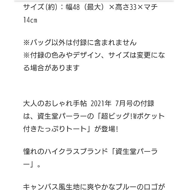 SHISEIDO (資生堂)(シセイドウ)のおとなのおしゃれ手帖付録資生堂厚手BIGトートバック レディースのバッグ(トートバッグ)の商品写真