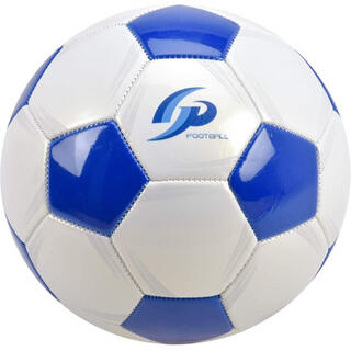 【空気入れとネット付】サッカーボール 4号 小学生用(ボール)