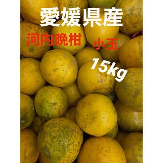 愛媛県産 河内晩柑小玉15キロ(フルーツ)