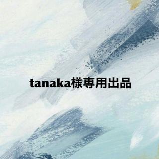東芝 - 東芝 (TOSHIBA)FlashAir 16GB