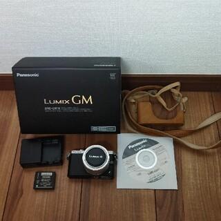 Panasonic - Panasonic DMC−GM DMC-GM1K-S