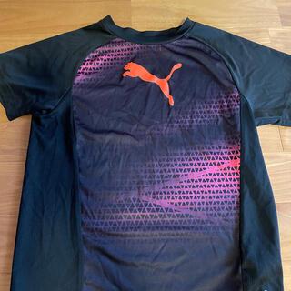 プーマ(PUMA)のプーマ半袖 Tシャツ(ウェア)