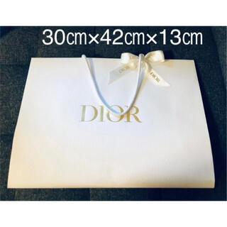 Dior - DIOR ショッパー 大