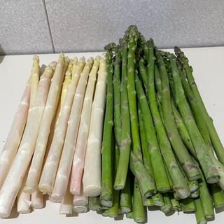 北海道産 採れたてグリーン・ホワイトアスパラ食べ比べセット S〜L 1kg(野菜)