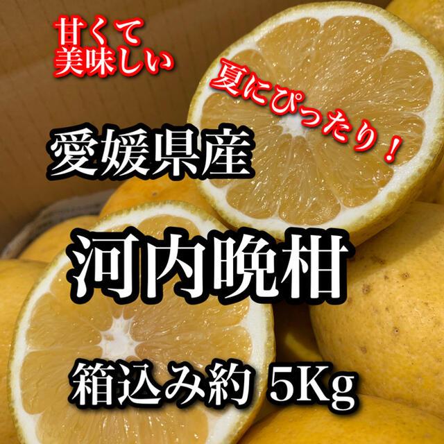 愛媛県産 河内晩柑 家庭用 食品/飲料/酒の食品(フルーツ)の商品写真