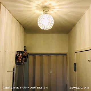 シーリングライト Jewel/C AM LED電球対応 日本製器具使用 天井照明(天井照明)