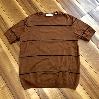 トゥモローランド(TOMORROWLAND)の美品✨トゥモローランド コットンニット生地Tシャツ(Tシャツ/カットソー(半袖/袖なし))
