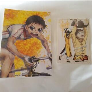 アキタショテン(秋田書店)の弱虫ペダル 小野田坂道 イラストシート ブロマイド(キャラクターグッズ)