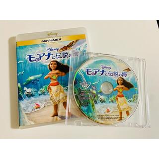 Disney - モアナと伝説の海  MovieNEX  DVDのみ