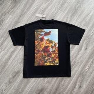 フィアオブゴッド(FEAR OF GOD)のFEAR OF GOD C-1115(Tシャツ/カットソー(半袖/袖なし))