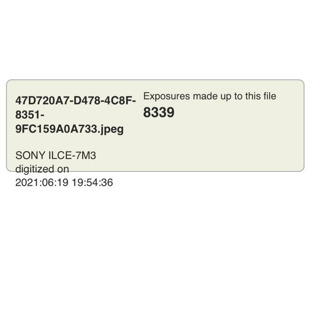 SONY(ソニー)のSony α7III  シャッター数8339回 スマホ/家電/カメラのカメラ(ミラーレス一眼)の商品写真