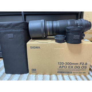SIGMA - SIGMA APO 120-300mm F2.8 EX DG HSM ニコン用