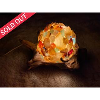 インテリア 照明 フロアランプ シェルランプ シーグラス 貝殻