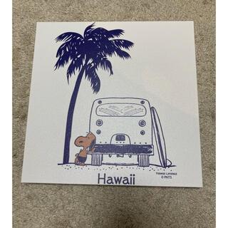 スヌーピー(SNOOPY)のsnoopy Hawaii キャンパス額(その他)